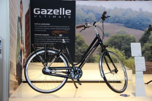 Gazelle_22