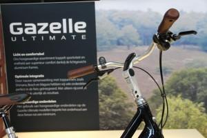 Gazelle_25