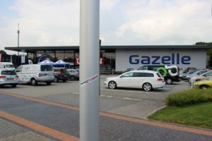 Gazelle_38