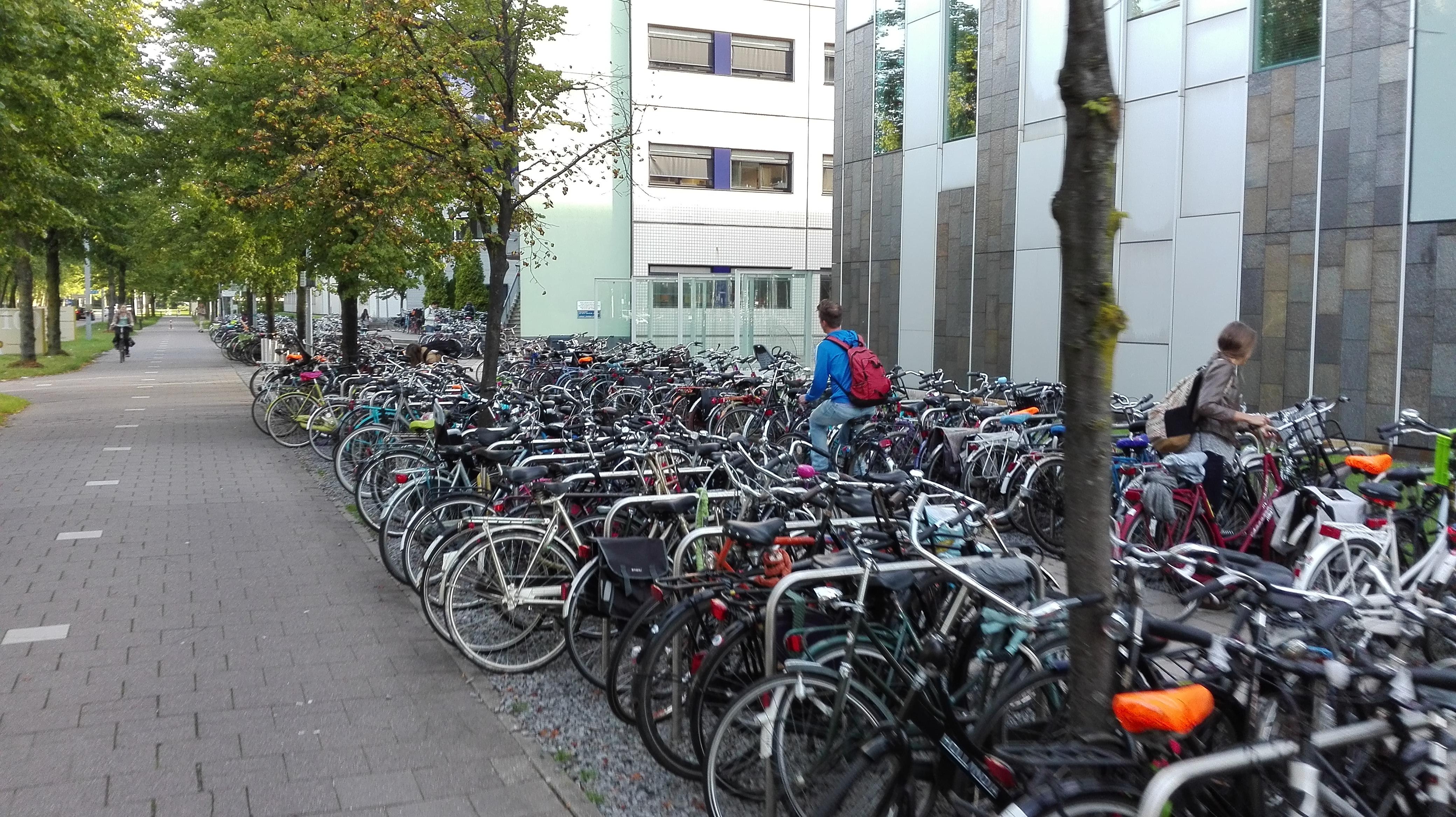 Ogólnodostępne parkingi rowerowe przy uniwersytecie
