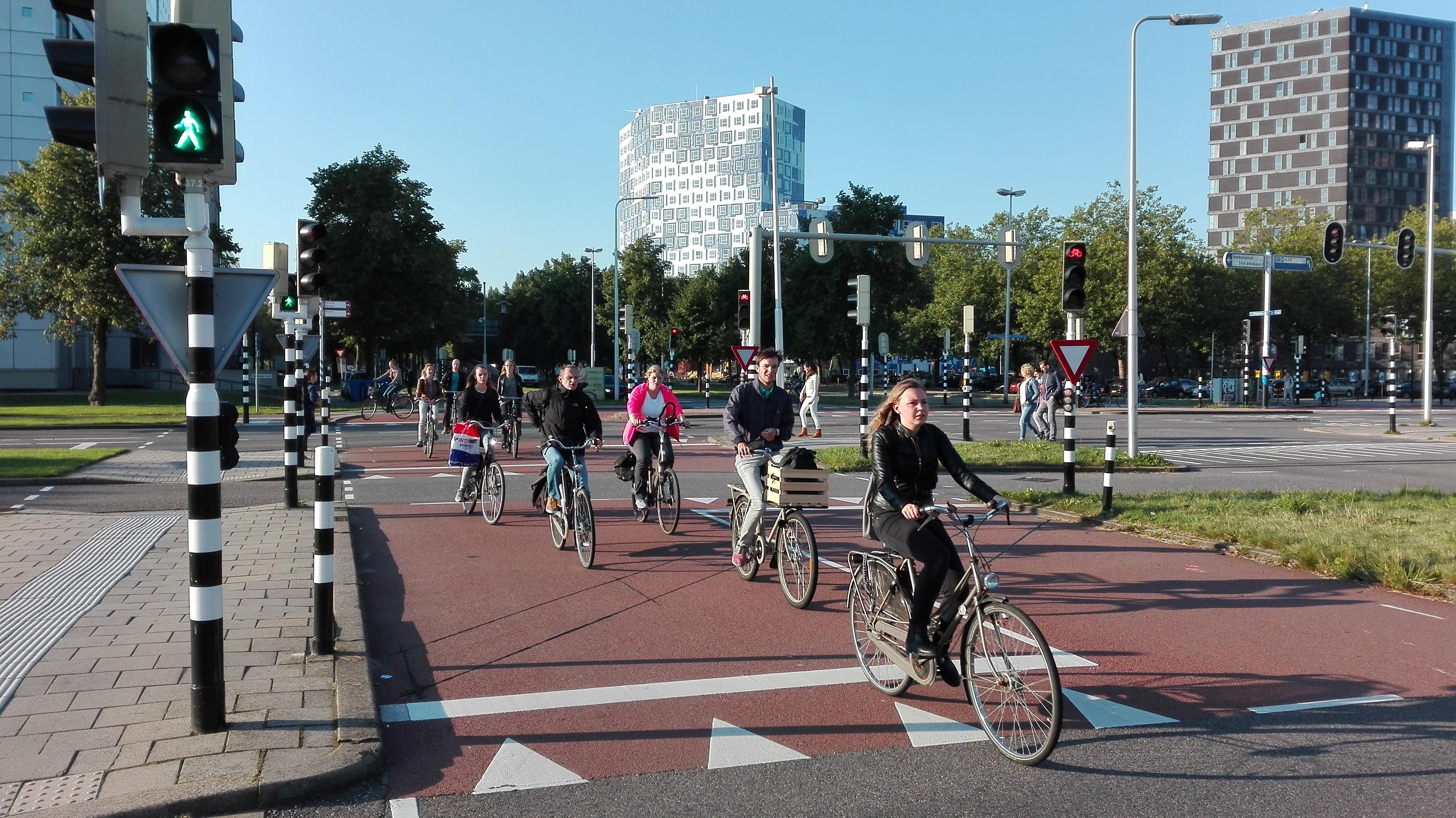 Szerokie drogi dla rowerów