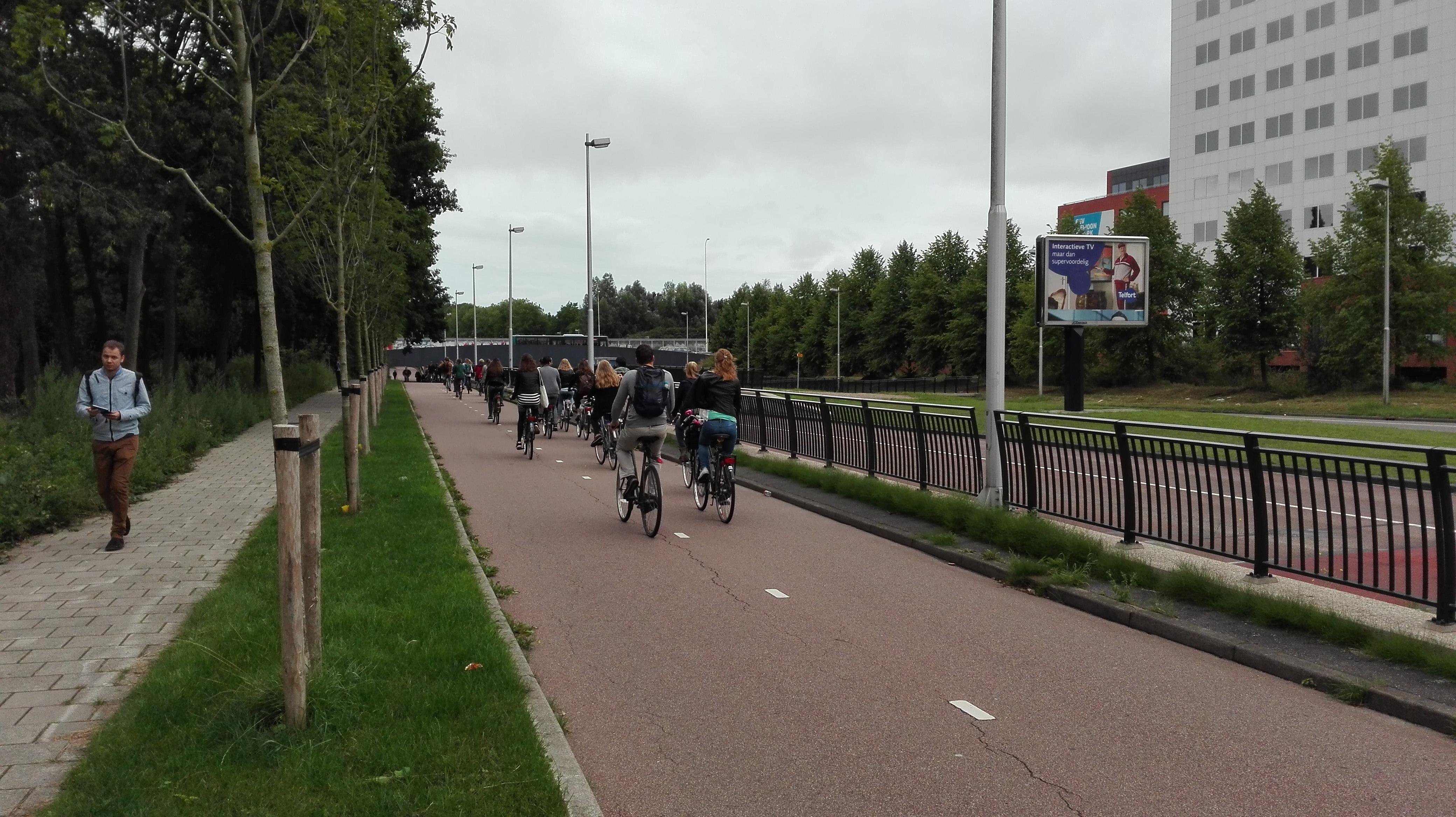 Drogi rowerowe w Holandii