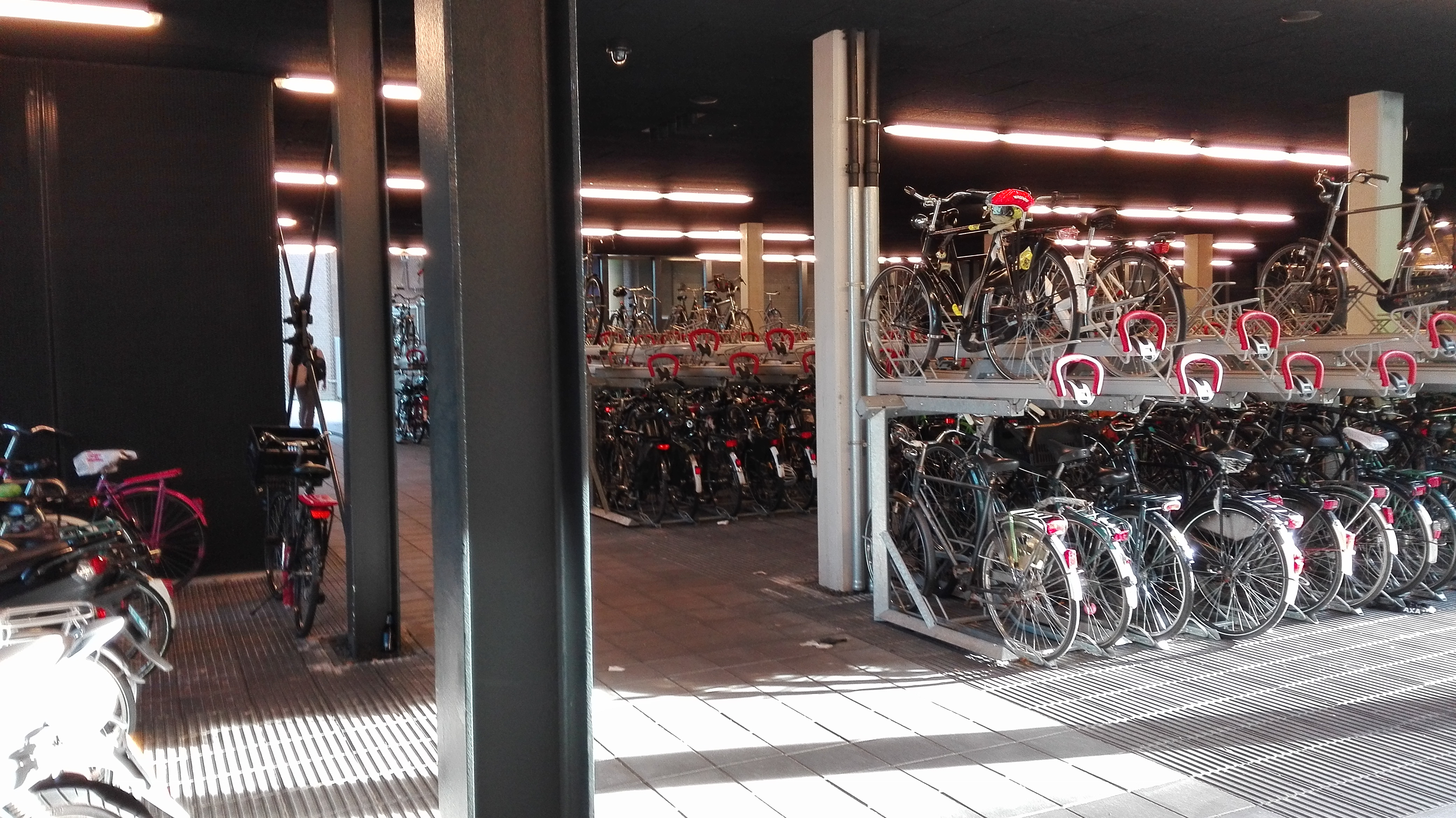 dużo rowerów holenderskich